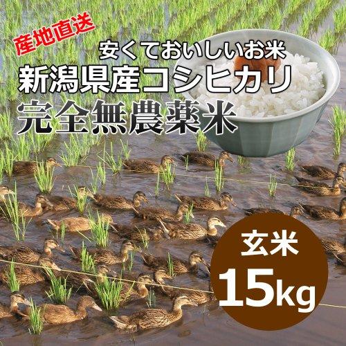 [自宅用][玄米]安くておいしいお米 新潟県産コシヒカリ 完全無農薬米[15キロ]