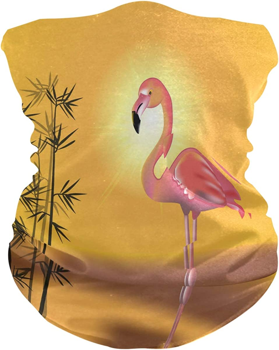 Bandana Face Scarfs Neck Gaiter Headwear Pink Flamingos Headband for Cycling Fishing Hiking Camping