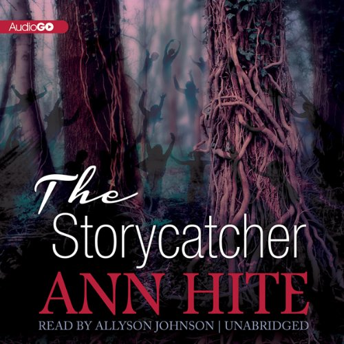 The Storycatcher audiobook cover art