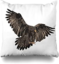 Ahawoso Decorative Throw Pillow Cover American Golden Eagle Realistic Abstract Bald Bird Prey Detail Design Fly Home Decor Zippered Square Size 18