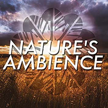 Nature's Ambience
