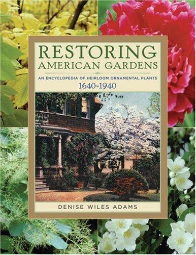 Designing An Ornamental Herb Garden Evergreen Herb Gardens