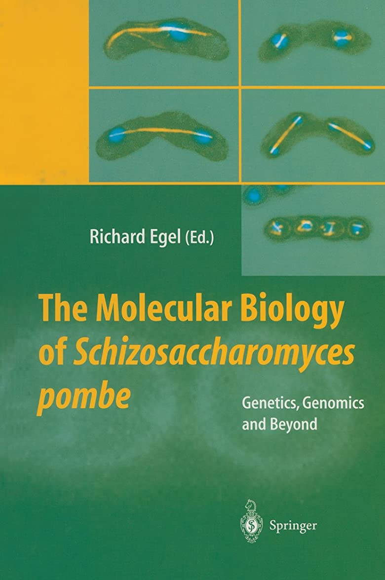 叱る主人不倫The Molecular Biology of Schizosaccharomyces pombe: Genetics, Genomics and Beyond (English Edition)