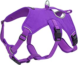 Best Pet Supplies, Inc. Voyager Padded and Breathable Control Dog Walking Harness for Big/Active Dogs