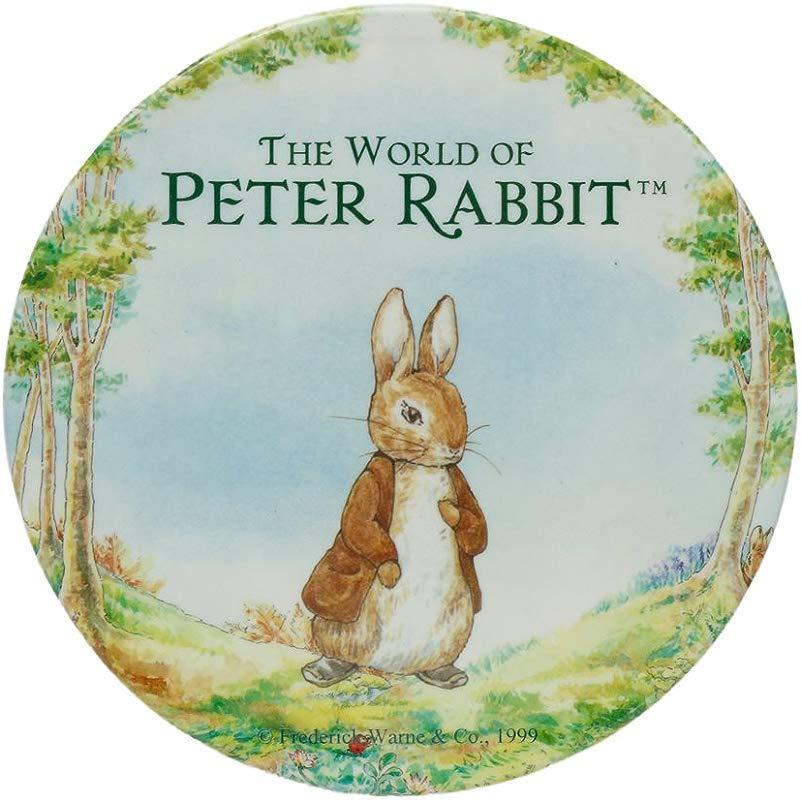 Peter Rabbit Melamine Teapot Trivet Wall Art Plate