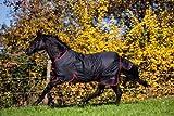 Kerbl Outdoordecke RugBe Zero.1 schwarz/rot Pferdedecke wasserabweisend (145)