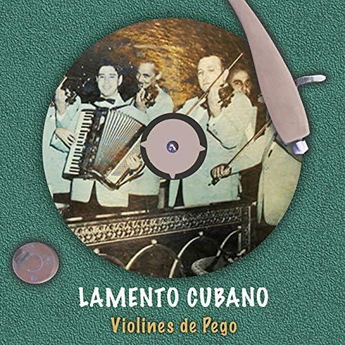 Violines De Pego