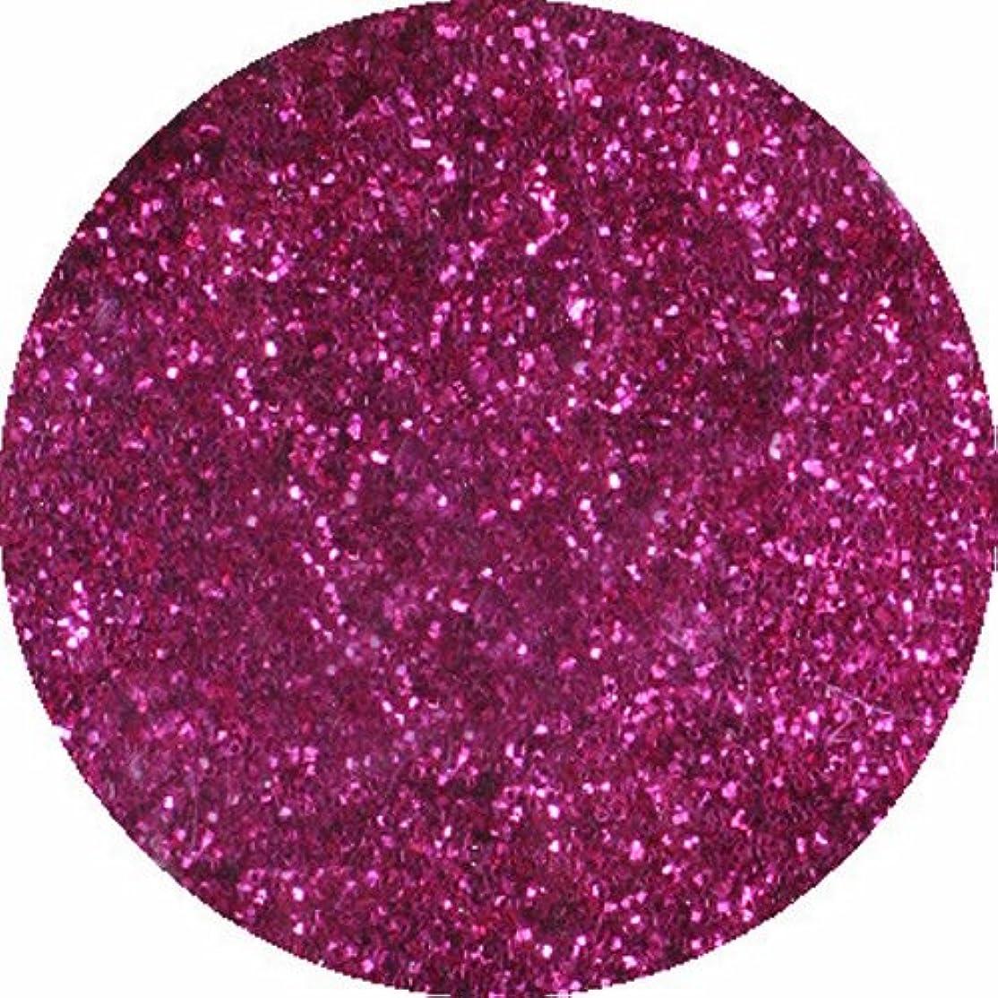 結果バイナリセッティングビューティーネイラー ネイル用パウダー 黒崎えり子 ジュエリーコレクション ピンク0.05mm