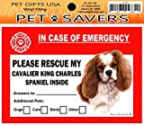 In Case of Emergency Home Window Pet Savers Rescue Cling Sticker, Cavalier King Charles Spaniel