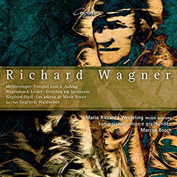 Wagner: Original Works & Adaptations for Chamber Orchestra