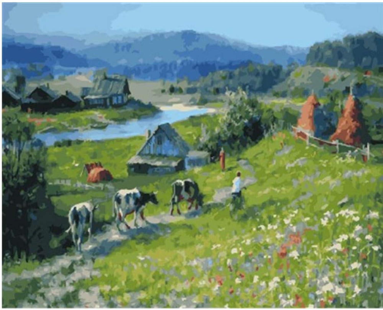 Malen Nach Zahlen Felder Und Herrliche Landschaft DIY Wohnkultur Für Erwachsene-Rahmen 40X50Cm B07PG4GR1F | Sale