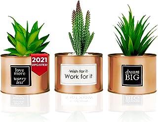 Office Decor for Women Desk - Desk Decor for Women, Bedroom Decor for Women - Desk Decorations for Women Office - Bookshel...