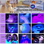 AOLOX Flashlight Black Light 51 LED Torch Light Ultraviolet Detector for Dog Urine Pet Stains and Bed Bug Housebreaking Use with pet odor eliminator 10
