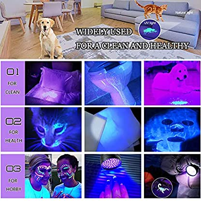 AOLOX Flashlight Black Light 51 LED Torch Light Ultraviolet Detector for Dog Urine Pet Stains and Bed Bug Housebreaking Use with pet odor eliminator 4
