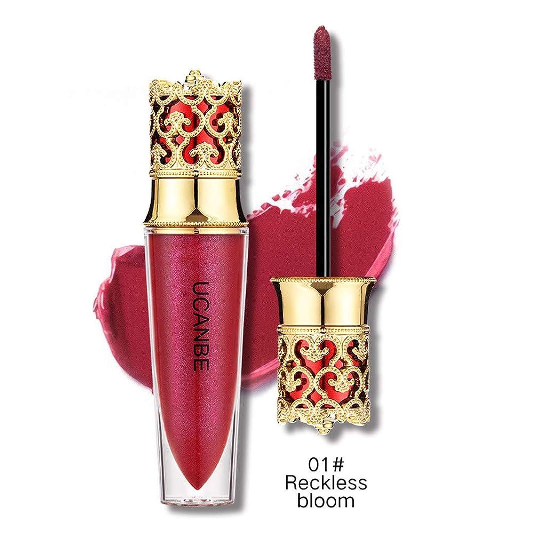 命令的数こんにちは液体口紅モイスチャライザー防水口紅化粧品美容メイク