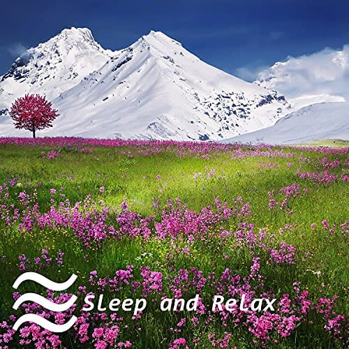 Stay Relaxed and Focus Blue Noise