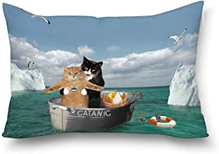 INTERESTPRINT Funny Catanic Two Cats Cosplay Titanic Home Decor Pillow Cover Case with Zipper, Decorative Pillowcase for Bedroom Sofa, Queen Size 20x30 Inch