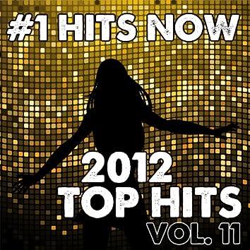2012 Top Hits, Vol. 11