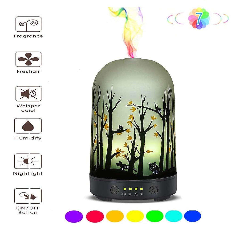 脱走郡味エッセンシャルオイルディフューザー - ガラスアロマ超音波加湿器 - 7色変化LED、無水自動消灯、タイマー設定、BPAなし(100mlアラジン)