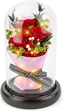 Kylin Glory Fleurs conservées, cadeaux avec des lumières d'ambiance LED Rouge