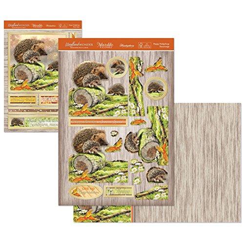 Hunkydory Woodland Wonder- Happy Hedgehogs Deco-Large Set Card Kit WOOD903