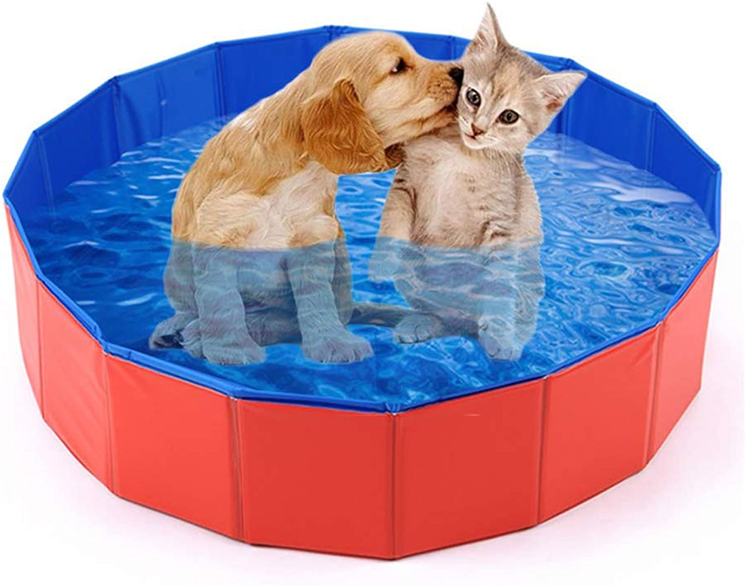 JYY Foldable Dog Pool,Collapsible Pet Spa Box Pet Swimming Pool Water Pond Outdoor Indoor For Small Medium Dogs Cat,M