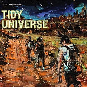 Tidy Universe