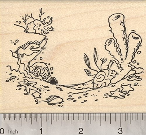 Ocean Floor Rubber Stamp, EEL, Clam, Starfish, Seashells