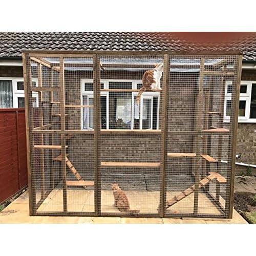 Cat Enclosure: Amazon co uk