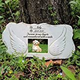 EXPAWLORER Dog Memorial Stone - Angel Carved Memorial Picture Frame - Waterproof Tombstone for Lawn and Garden - Loss of Pet Gift