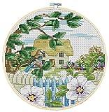 WOWDECOR Kit de broderie au point de croix avec de jolis oiseaux, fleurs et clôture, 11 ct, estampillé à faire soi-même DMC Needlework facile pour débutants