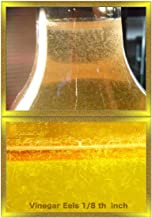 Vinegar Eels (8 Full Ounces) Live Food for Tiny Fish Fry, Invertibrates and Corals …