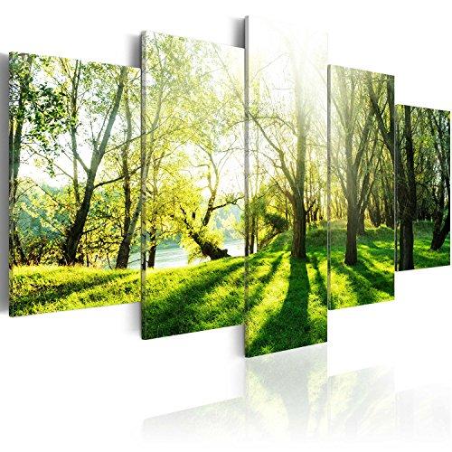 murando Akustikbild Natur Bäume 225x112 cm Bilder Hochleistungsschallabsorber Schallschutz Leinwand Akustikdämmung 5 TLG Wandbild Raumakustik Schalldämmung c-B-0030-b-n