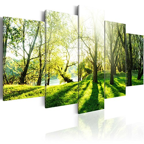 murando - Acrylglasbild Abstrakt 200x100 cm - 5 Teilig - Bilder Wandbild - modern - Decoration c-B-0030-k-n