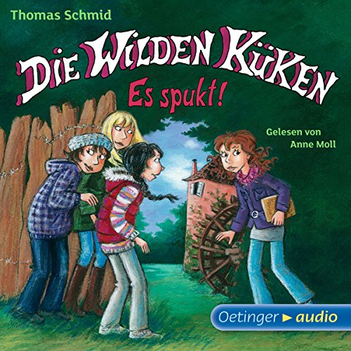 Es spukt! audiobook cover art