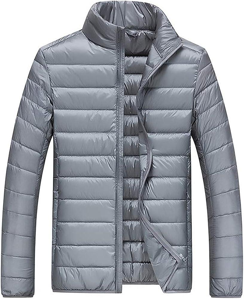 EFFIE Men's Short Warm Down Jacket Winter Stand Collar Slim Lightweight Coat (Gray, M)