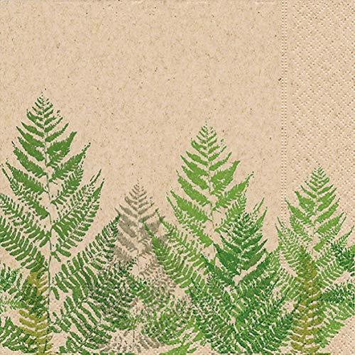 Paper+Design GmbH - umweltfreundliche Servietten | 100% Recycling - Tissue | 25 Lunchservietten 33x33cm | Einwegservietten Farn