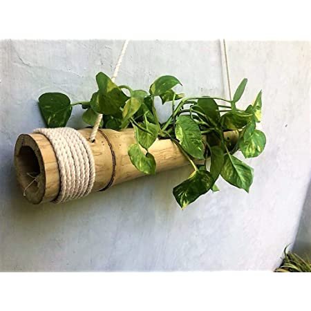 COIR GARDEN - Bamboo Hanging Planters - Bamboo Stand - Pack of 1