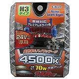 REMIX(レミックス) ハロゲンバルブ 24V専用 H3 4500K 140Wクラス RS-373