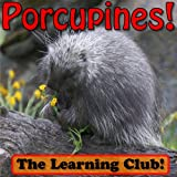 Porcupines! Learn About Porcupines And Learn To Read - The Learning Club! (45+ Photos of Porcupines) (English Edition)