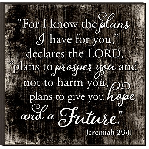 The Plans I Have for You Jeremiah 29:11 Black and White 12 x 12 Wood Wall Art Sign Plaque