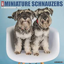 Just Miniature Schnauzers 2020 Calendar