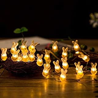 WesGen Easter LED String Lights,Battery Operated Bunny Light,30 Pastel Bulbs 10ft Long,for Outdoor and Indoor Decorations
