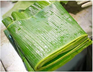Fresh Banana Leaves 1 Lb. Hoja de Platano