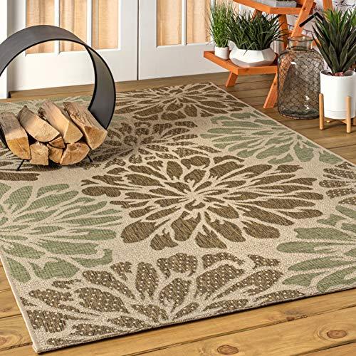 JONATHAN Y Zinnia Modern Floral Weave Indoor/Outdoor, Bohemian,EasyCleaning,HighTraffic,LivingRoom,Backyard, Non Shedding Area Rug, 8 X 10, Sage/Brown