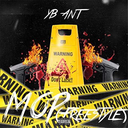 Yb Ant