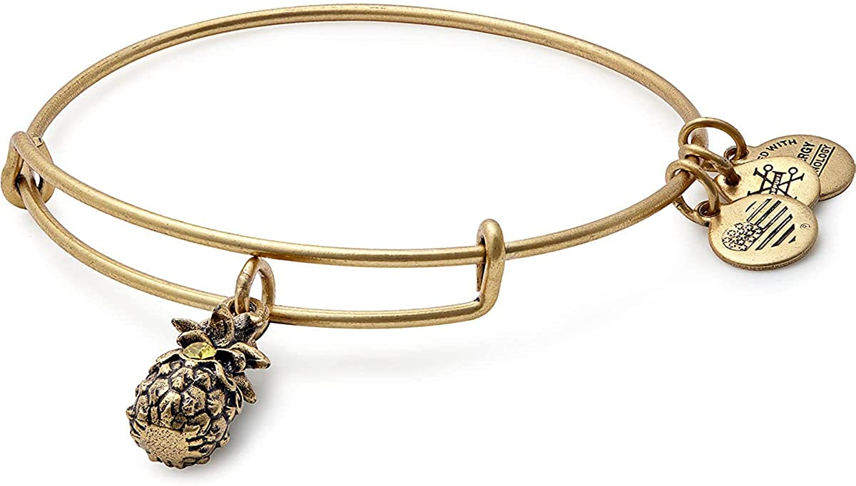 Alex and Ani Path of Symbols Expandable Bangle for Women, Pineapple Charm, Rafaelian Finish, 2 to 3.5 in