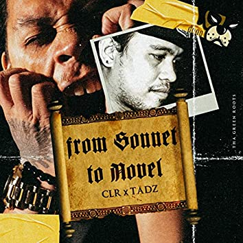 From Sonnet to Novel