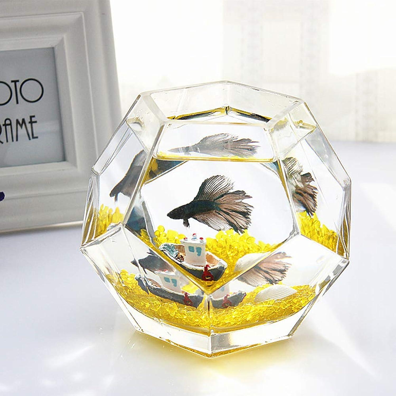 Aquarium Desktop Fish Tank  Small Transparent Glass Display for Home Desk