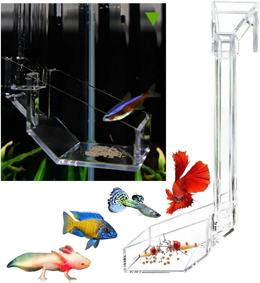 Shrimp Fish Feeding Dish, Aquarium -Sky Restaurant- Betta Feeding - Prevent Food Spilling, Fish Feeder, Also Easy to Clean Up The Food Left Over, African Feeding, Dwarf Frogs Feeding